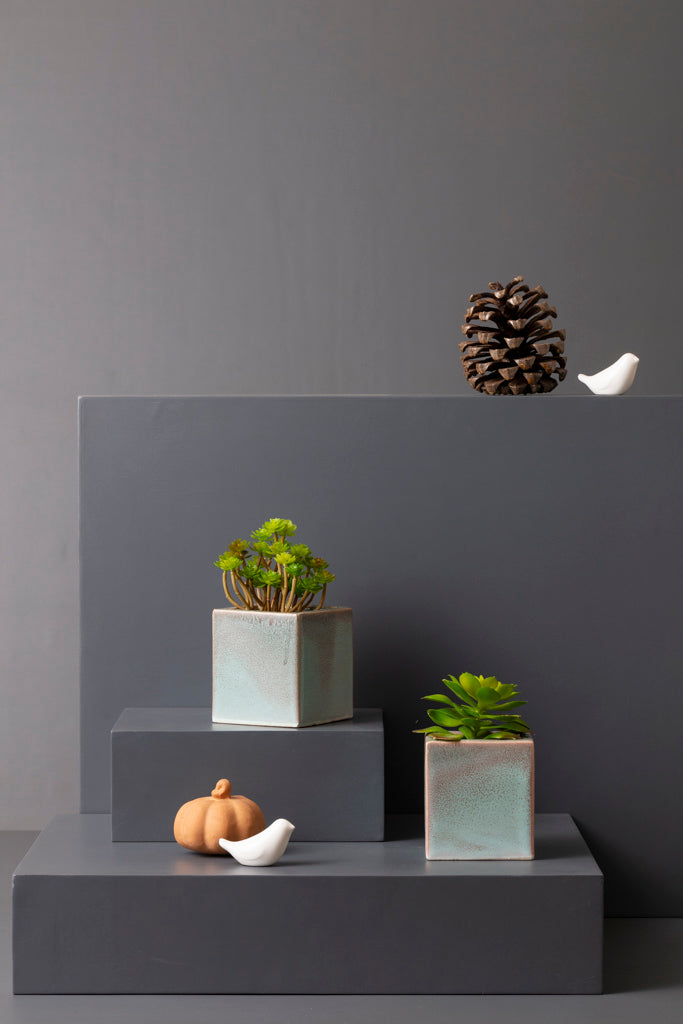 TED PLANTER - BLUE