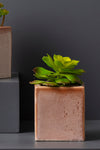 TED PLANTER - SALMON - Studio Kiklee By Simrat Kohli