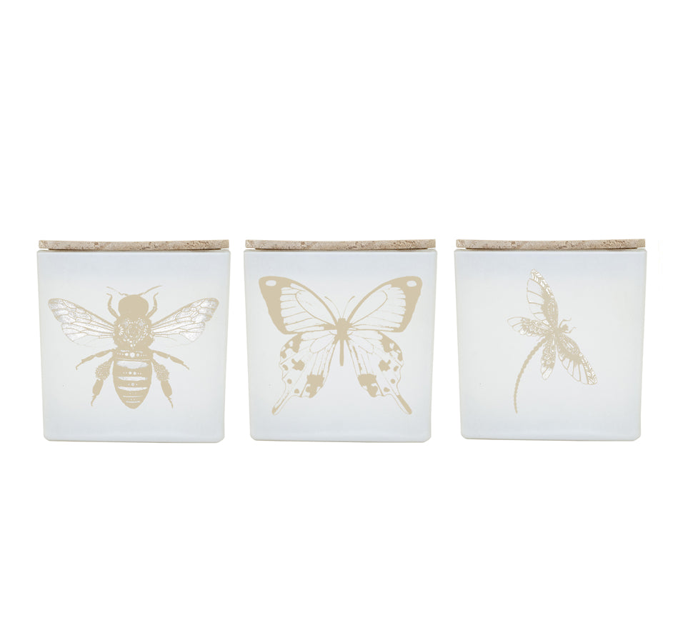 BUG CANDLES (GIFT SET) IG