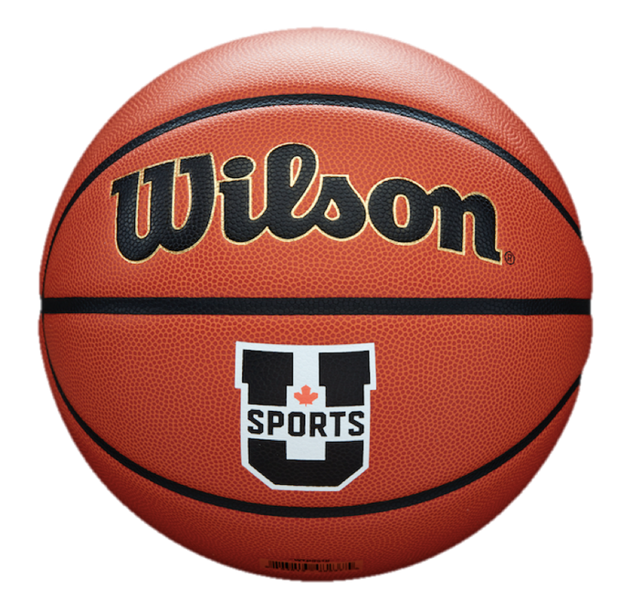 Wilson Evolution Official U SPORTS Game Ball (Basketball)