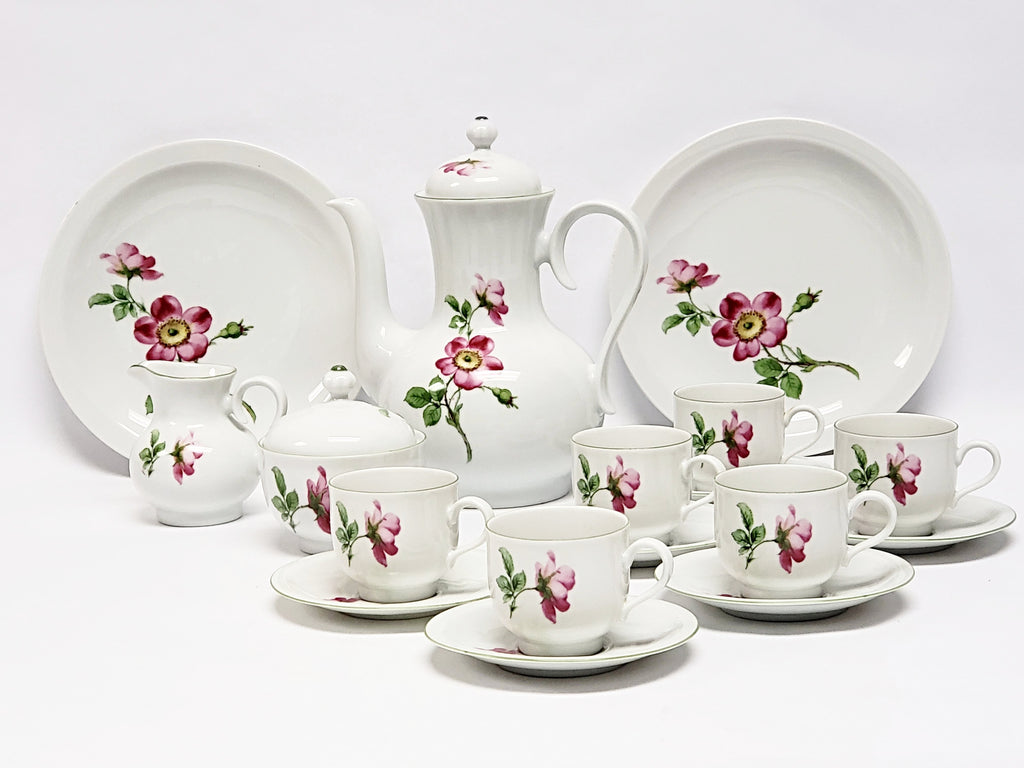 Demitasse Coffee Set 19 pieces by Bareuther Waldsassen Bavaria-Germany