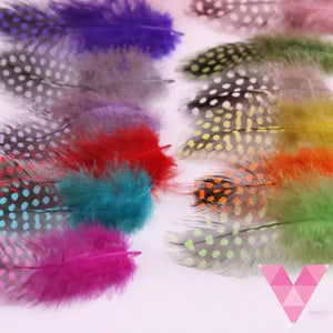 Multi Color Pack Feathers