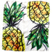 Summer Pineapple Lola Square Scarf - 21.5 X 21.5""