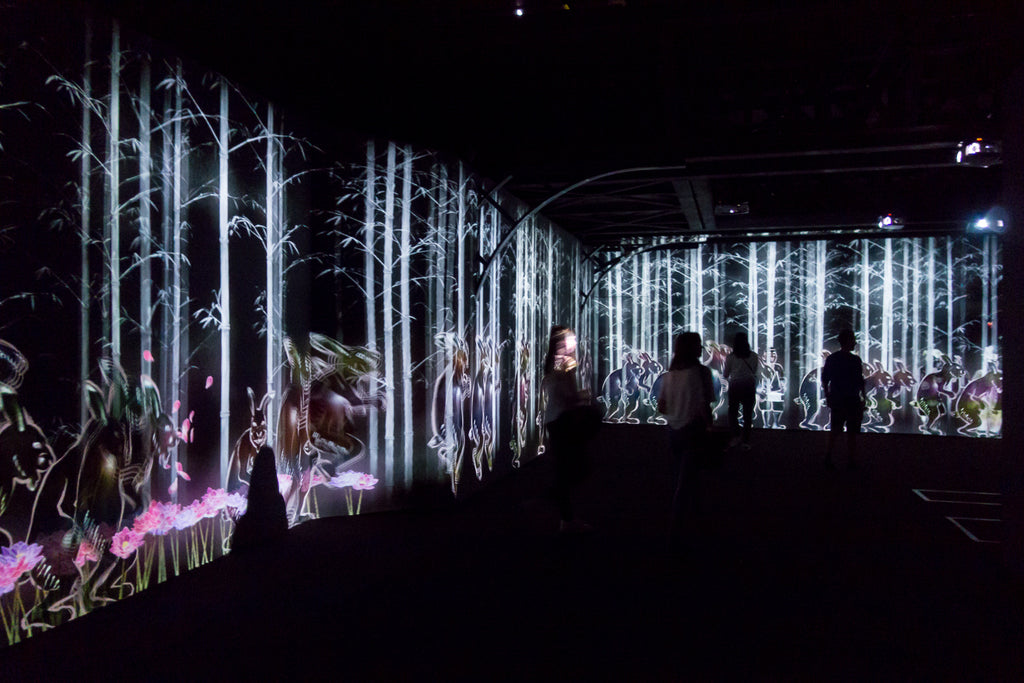 TeamLab Au-dèla des limites paris la villette digital art