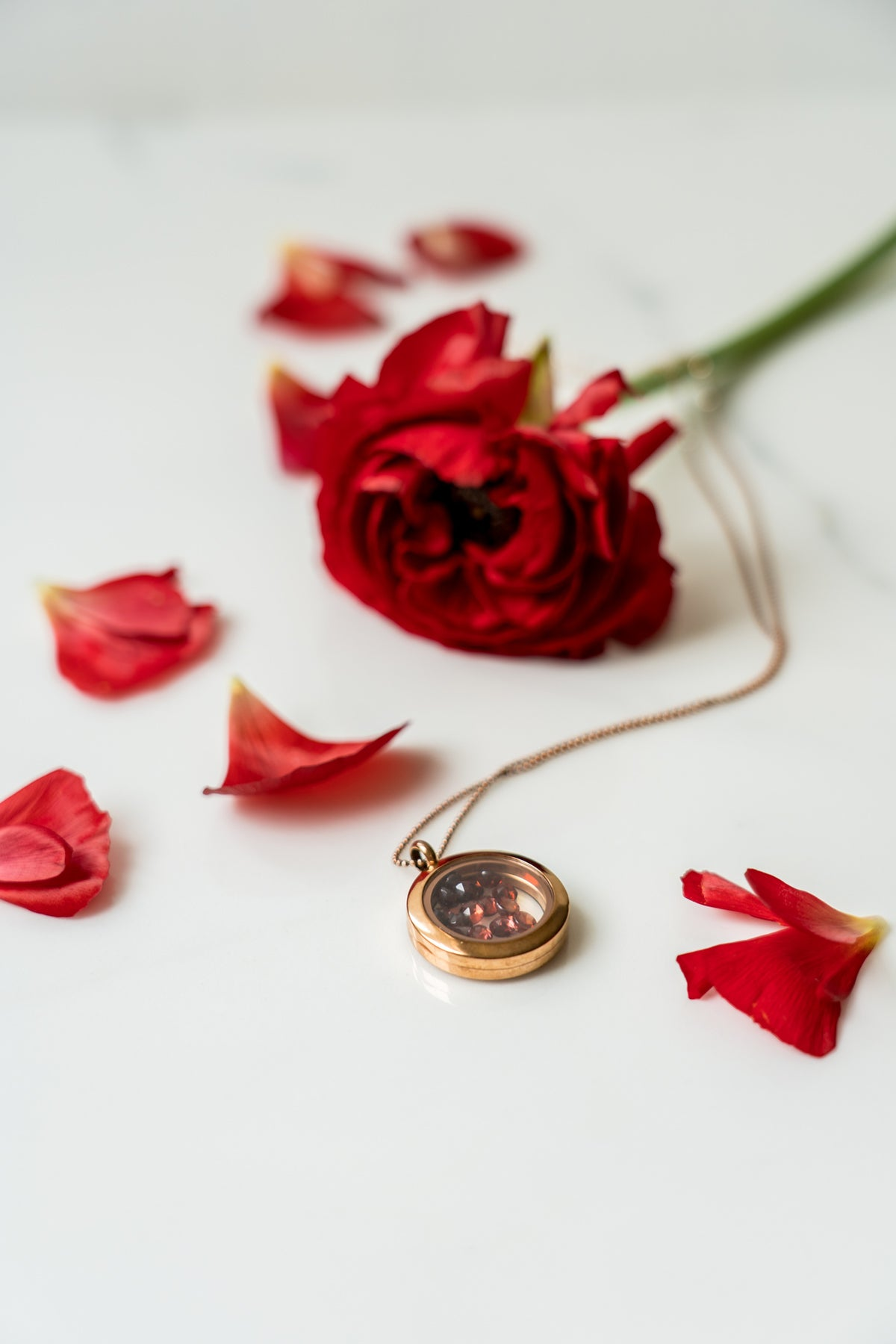 garnet rose gold shaker locket necklace
