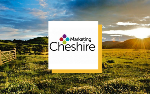 petjam marketing cheshire in the news