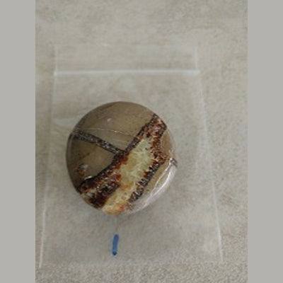 "Septarian Gallet/palmstone Madagascar Approx 1 1/3"" - Love My Pet Gemstone"