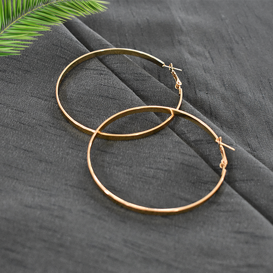 Isabella Gold - Classic Hoop Earrings