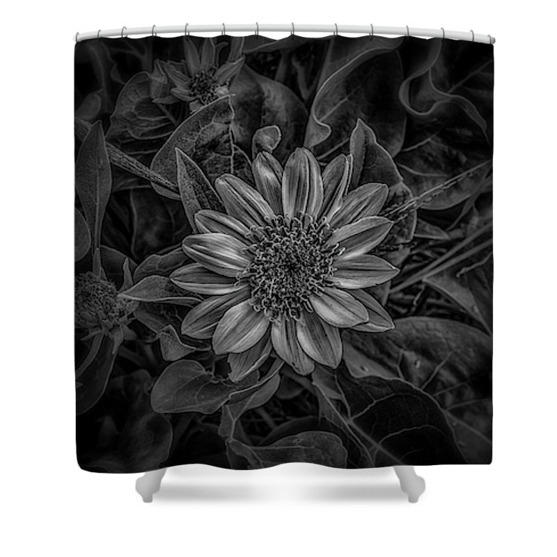 Black and white flower shower curtain mark cooper photography black and white flower shower curtain mightylinksfo