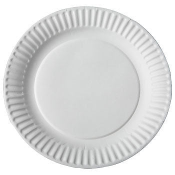 "9"" Uncoated Paper Plate, 100 per package - Thebestpartydeals"