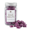 Northern Lights Candles / Mason Melts - Plum Orchid