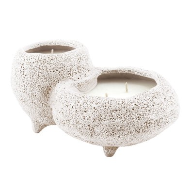 Northern Lights Candles / Sill - Desert Rose & Cashmere Drift
