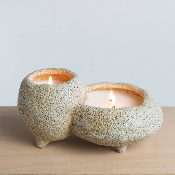 Northern Lights Candles / Sill - Agave Nectar & Dune Primrose