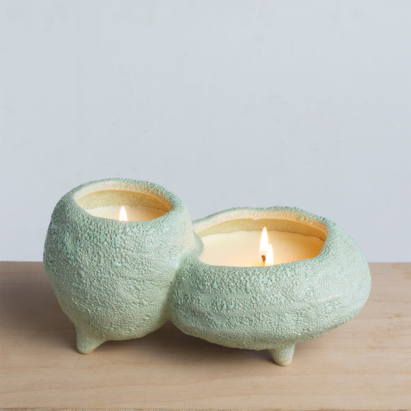 Northern Lights Candles / Sill - Cactus Coast & Mango Leaf