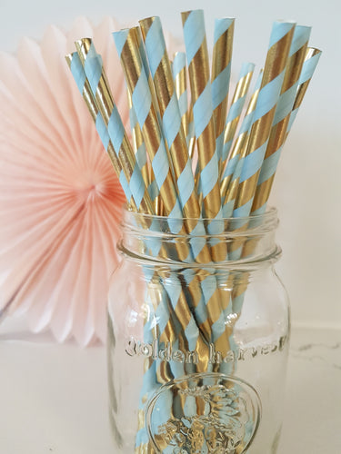 Periwinkle twist paper straws - Little Rose Party Company