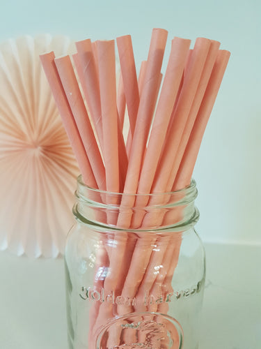 Pink paper straws - Little Rose Party Company