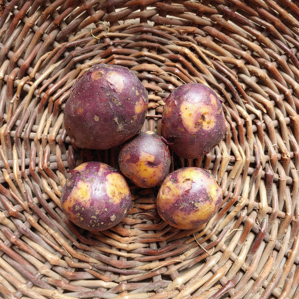 Image of Huckleberry Gold Potatoes