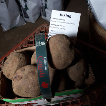 Potatoes, Viking (1.5L)