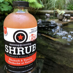 Shrub, Rhubarb Vanilla (473ml)