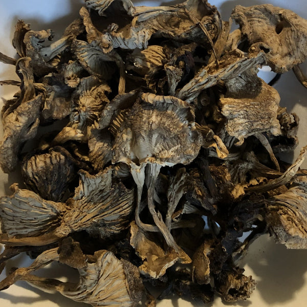 Mushrooms, Dried Wild Yellowfoot (40g)