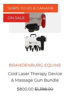 equine therapy equipment bundle