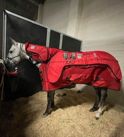 PEMF Equine Therapy Blanket