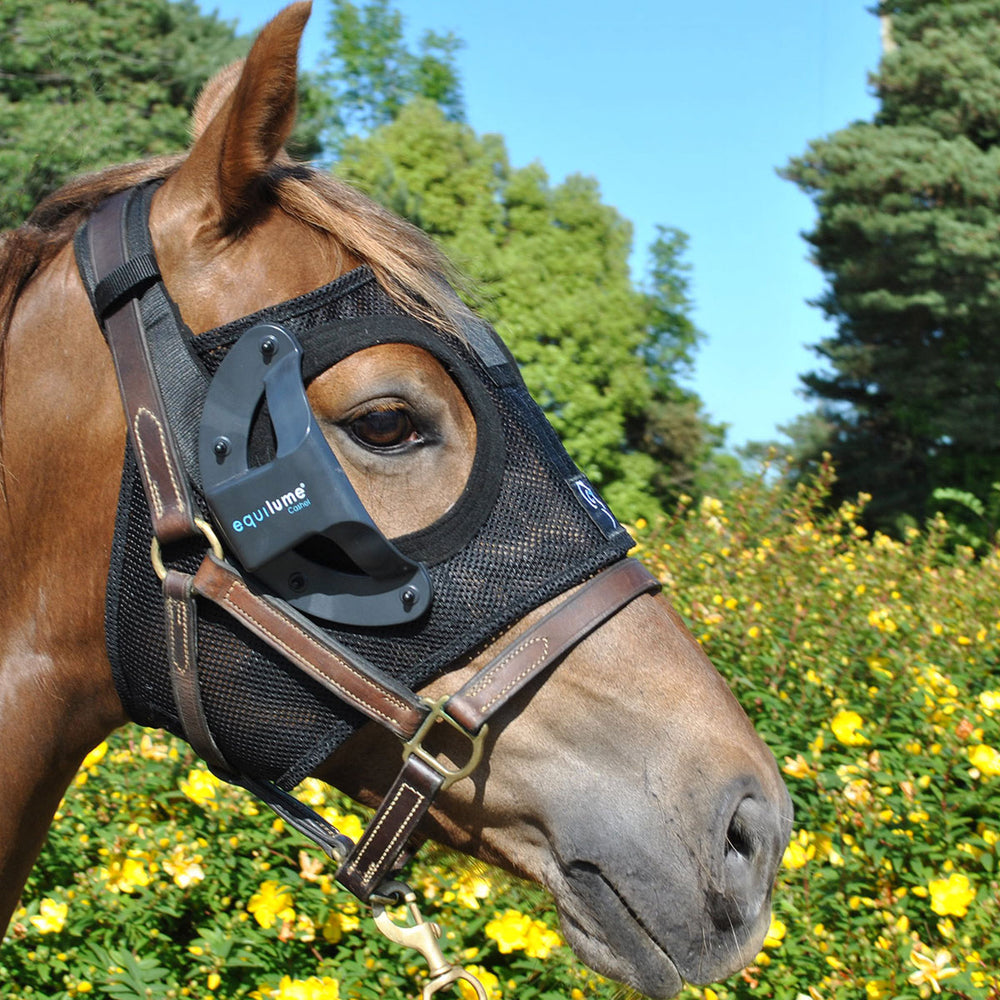 Cashel Equine Blure Light Mask