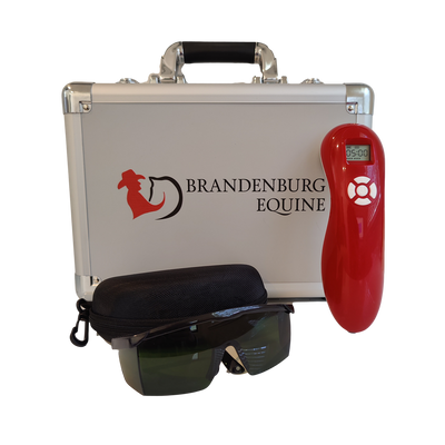 3B cold laser therapy device equine