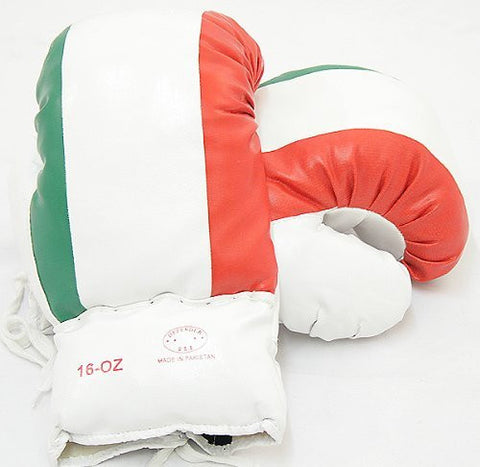 16oz Italian Flag Boxing Gloves Good Quality by Lastworld