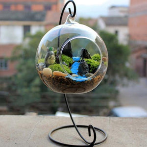Hanging Glass Vase Terrarium - Zen Worlds