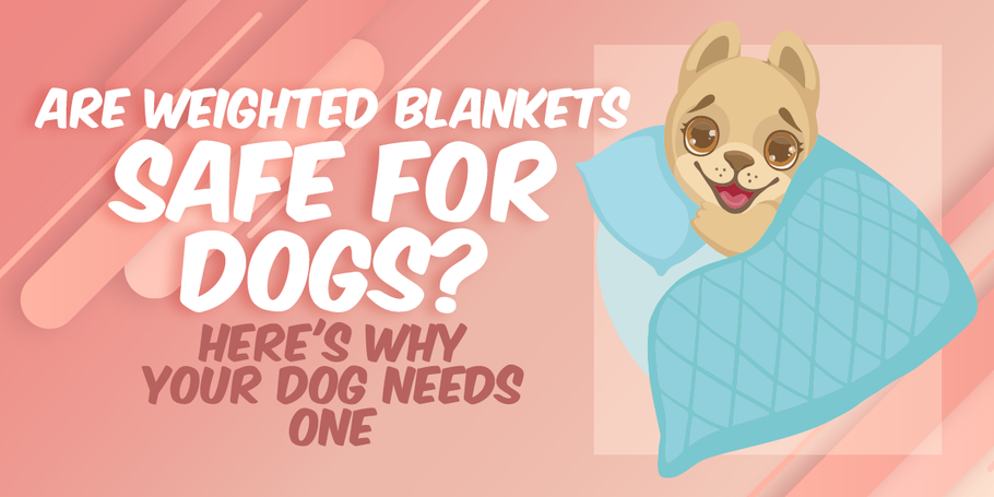 Are Weighted Blankets Safe For Dogs? Here's Why Your Dog Needs One