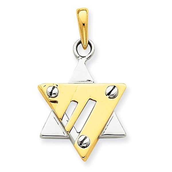 14k Gold Two Tone Star of David Pendant Charm
