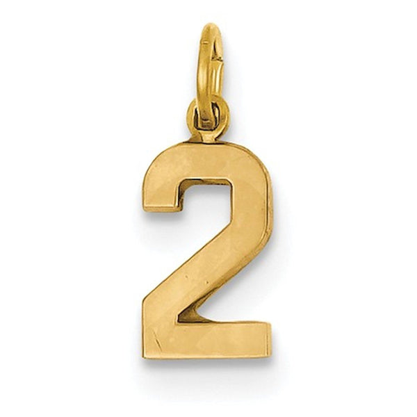 14k Yellow Gold Number 2 Two Pendant Charm