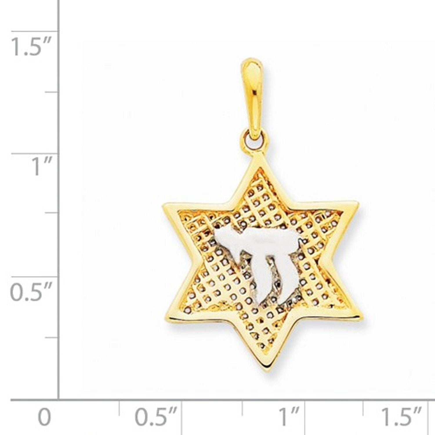 14k Yellow Gold Rhodium Chai Star Mesh Pendant Charm