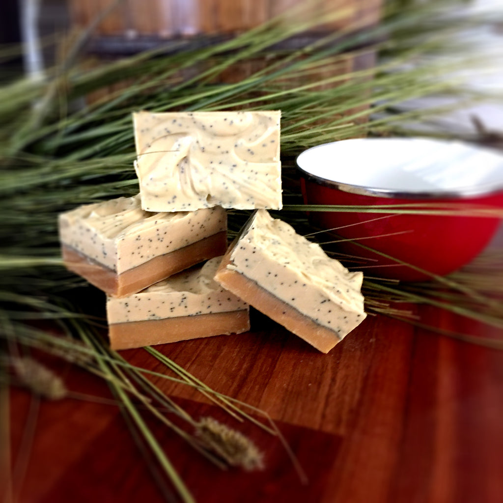 Lemongrass Goat Milk Soap: Top layer is white with poppyseeds dispersed throughout while the bottom is smooth and orange that has been colored with paprika