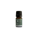 Earth's Aromatique - Plai Essential Oil 5ml | Kolya Naturals, Canada