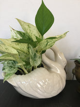 Load image into Gallery viewer, Vintage Swan Pottery Planter In White With Gold Accent USA Pottery