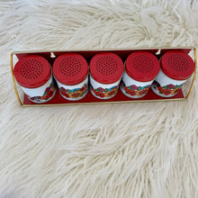 Load image into Gallery viewer, Vintage 70s Spice Shaker Set With Rack NIB