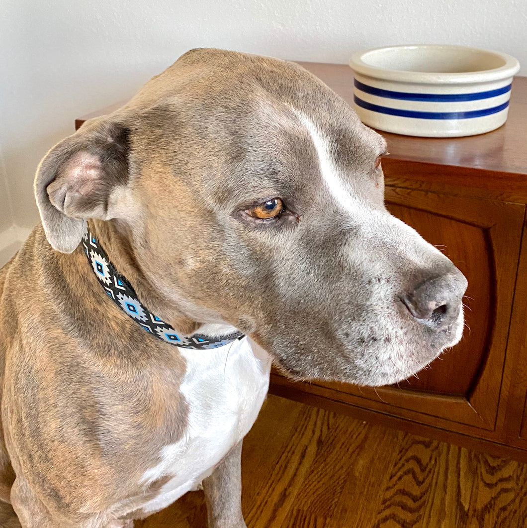 Vintage Roseville Pottery Dog Bowl