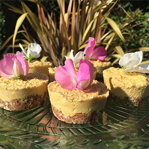 Raw Mango and Coconut Cheesecakes - Barre Base