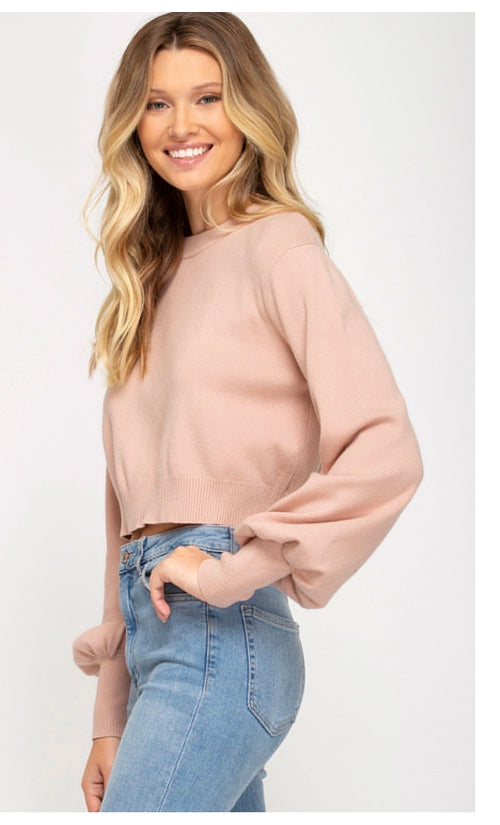 * Rose cropped sweater