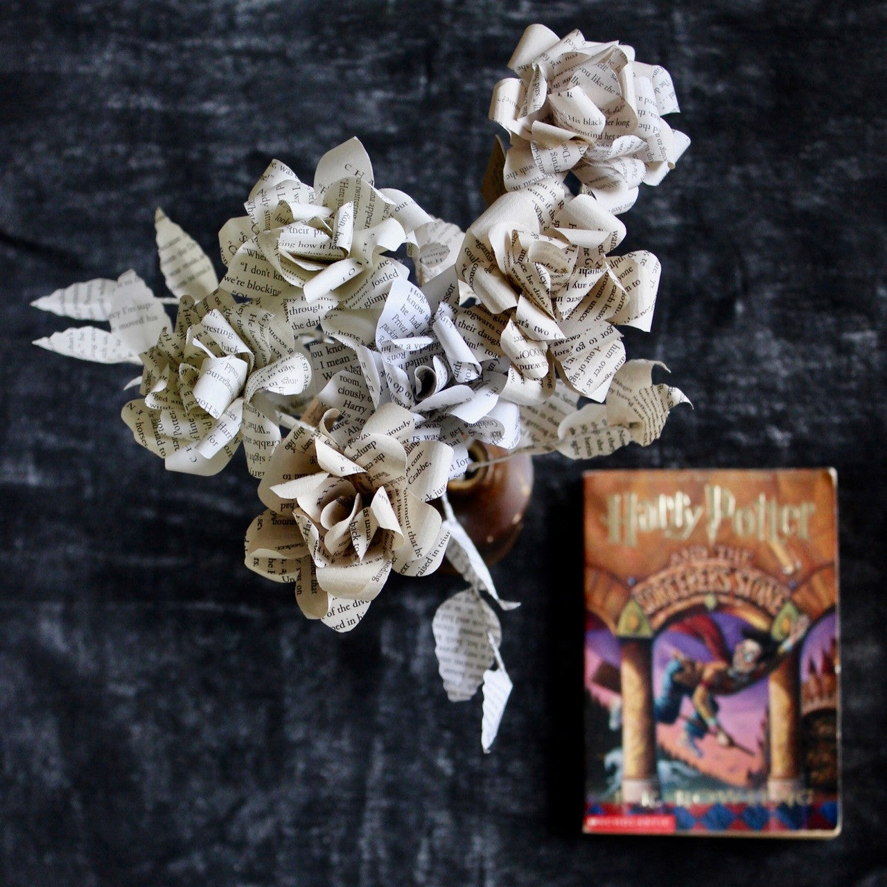 Harry Potter Roses