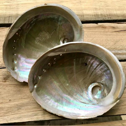 Abalone Shells -The perfect accessory to get your smudge on - JOURNEY artisan soaps & candles
