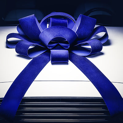 "Blue Velvet 30"" Car Bow"