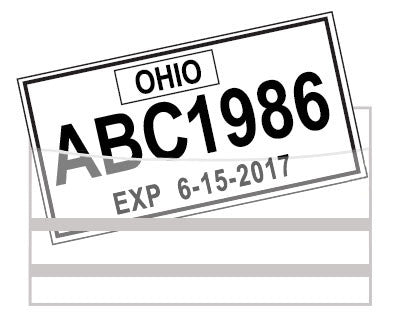 License Plate Tag Bag with Adhesive - Economy