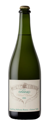 Onward Pét-Nat Malvasia Bianca (750ml bottle), 2018