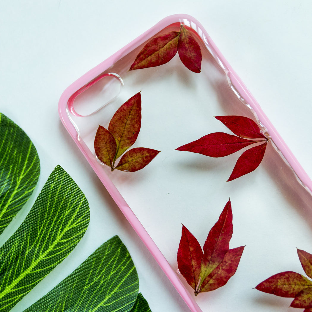 Blaze | Pressed Flower iPhone Bumper Case | iPhone 5/5s/SE