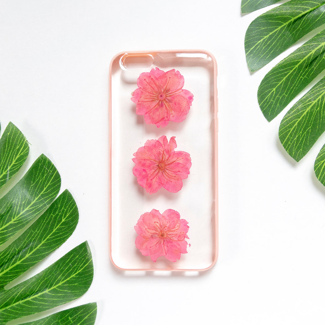 Floral Neverland Floralfy Rouge Real Pressed Pink Cherry Blossom Flower Floral Foliage Botanical iPhone 6 iPhone 6s Bumper Case 01