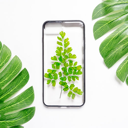 Pine | Pressed Flower iPhone Bumper Case | Real Pressed Fern Clear iPhone Case