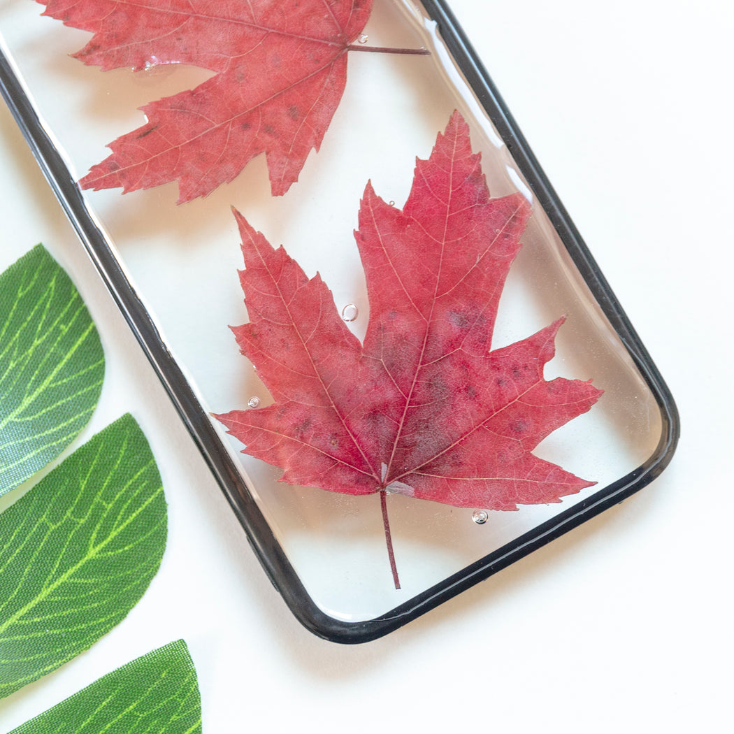 Floral Neverland Floralfy Fall Leaves Real Pressed Red Canadian Maple Leaf Flower Floral Foliage Botanical iPhone 5 5S SE Bumper Case 03